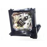 Replacement Lamp 250w Oem (dt00471)